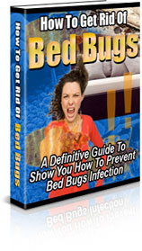 A Definitive Guide To Show You How To Prevent Bed Bugs Infec